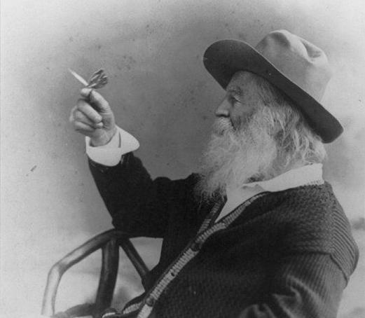 Walt Whitman with butterfly
