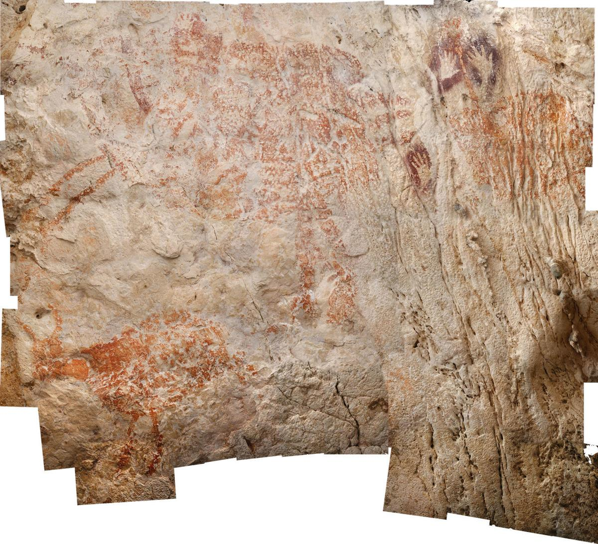 The earliest evidence of human art is this cave painting of a cow