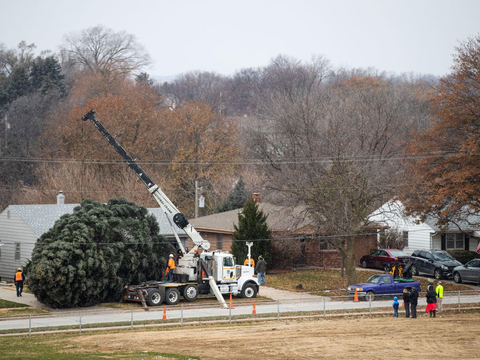 Transporting a 50-foot tree to the Durham Museum