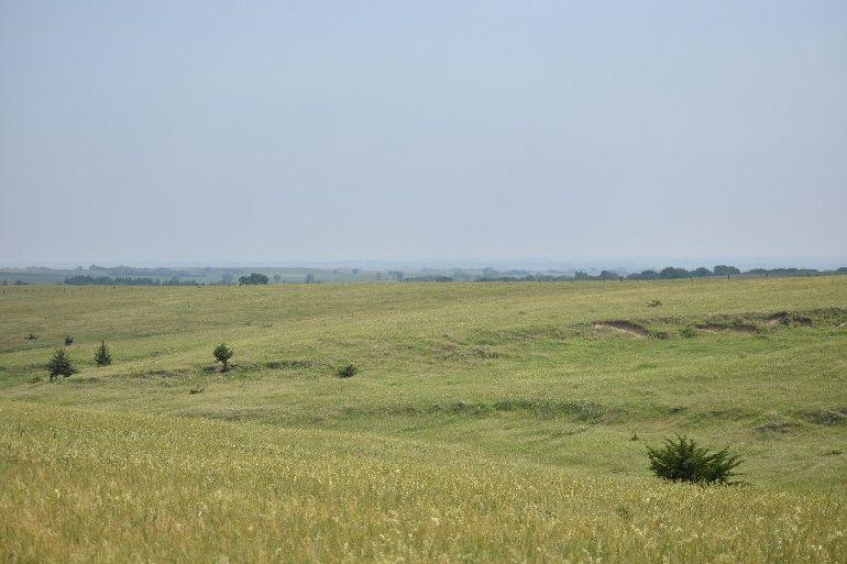 Meyer prairie (copy) (copy)