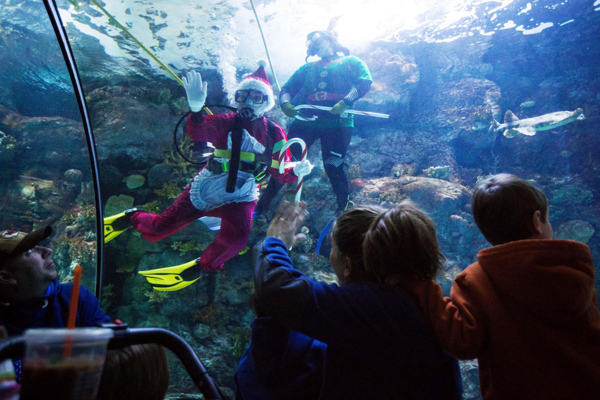 Santa Claus and his crew swim with the sharks at Henry Doorly Zoo