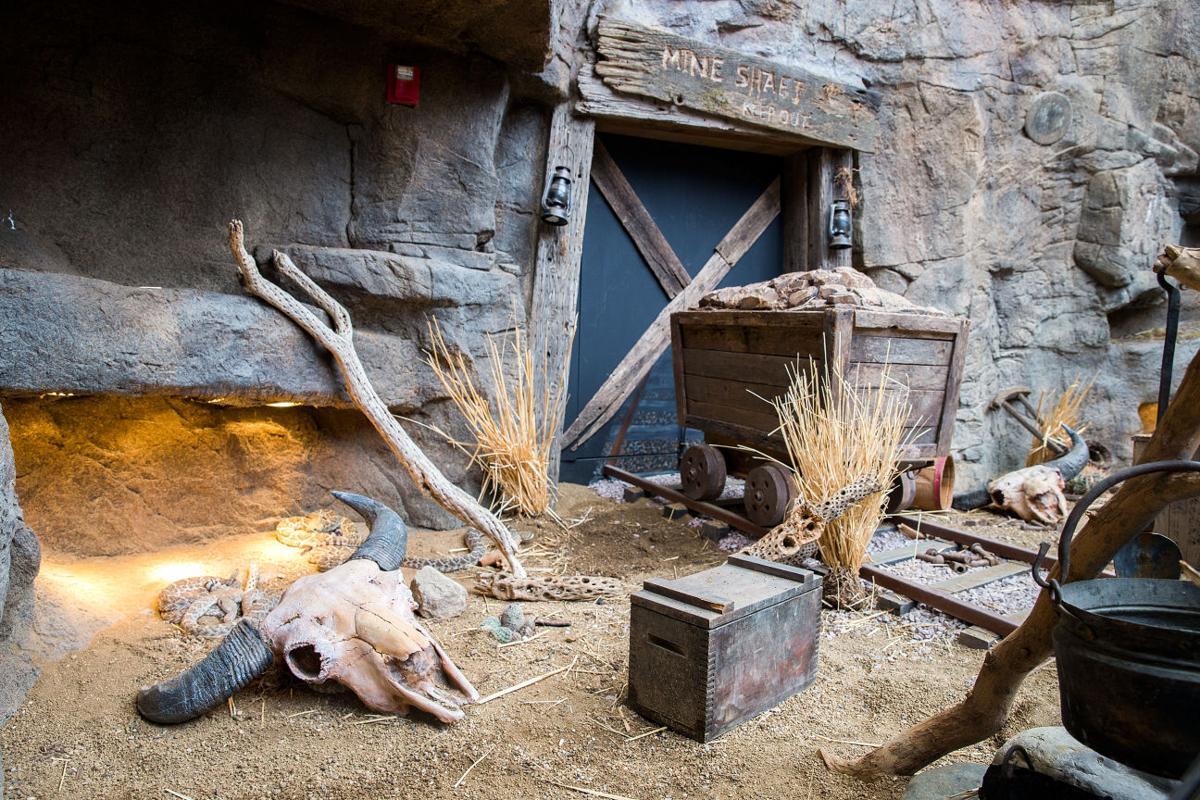 Omaha zoo prices best zoo in the world 2018 henry doorly zoo and aquarium omaha nebraska wildwomenwanderers publicscrutiny Image collections