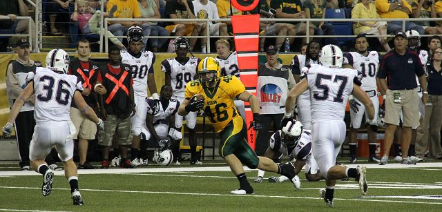 Title satisfying for Bison's Bonnet