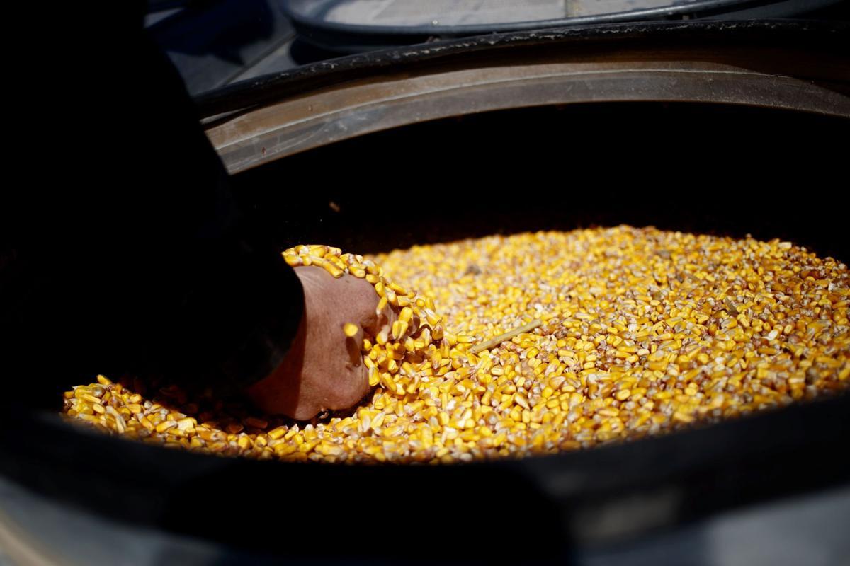 Amid cash crunch, Nebraska farmers remain reliant on ...