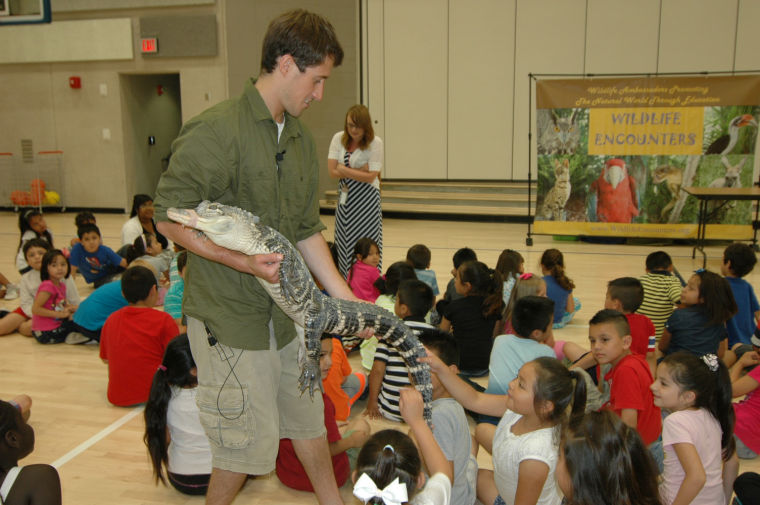 Chalkboard: Summer students see alligator at Gateway Elementary