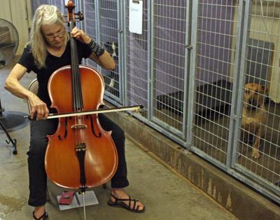 20190703_pt_cello