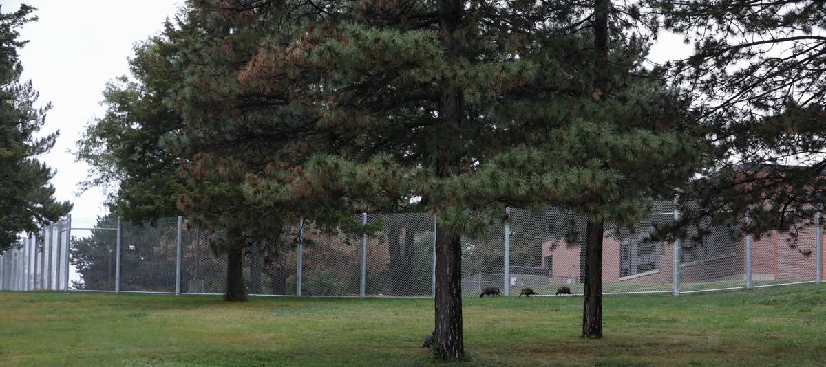 10_1_19 YRTC fence south side