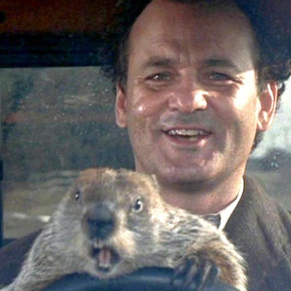 """Image result for groundhog day images movie"""""""