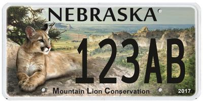 Mountain Lion license plate