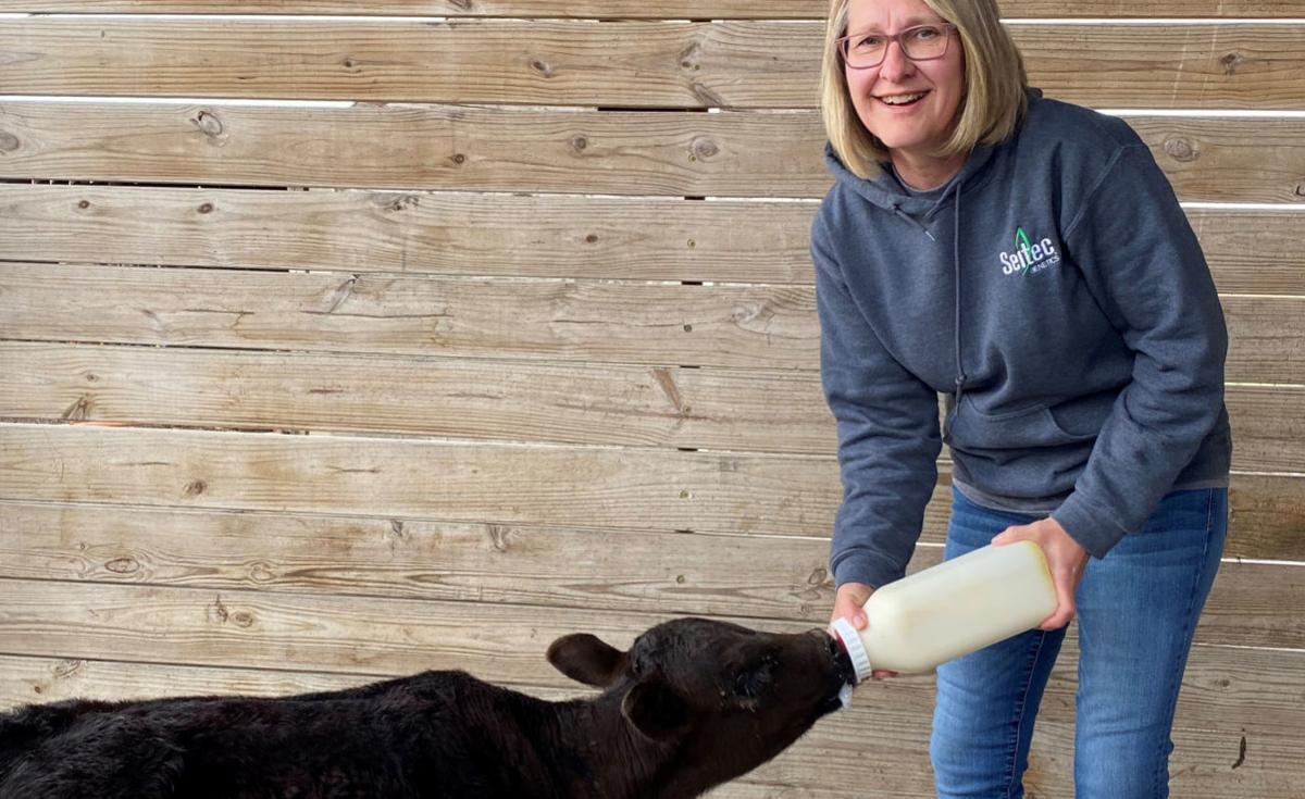bottle feeding a calf cropped.jpg