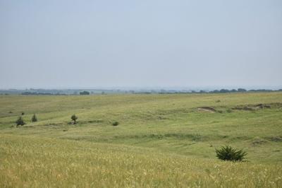 Meyer prairie