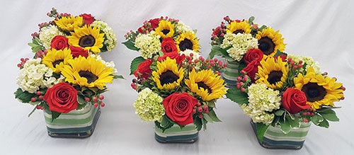 Corum's Flowers & Gifts | Greenhouse | Delivery| Council Bluffs | Omaha | Array