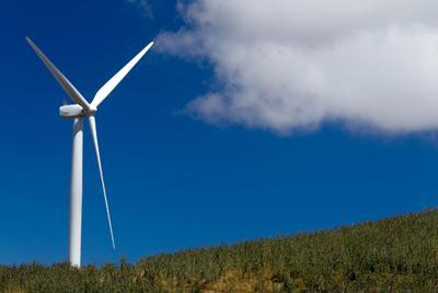 windfarmsplash