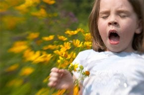 Allergy sneeze