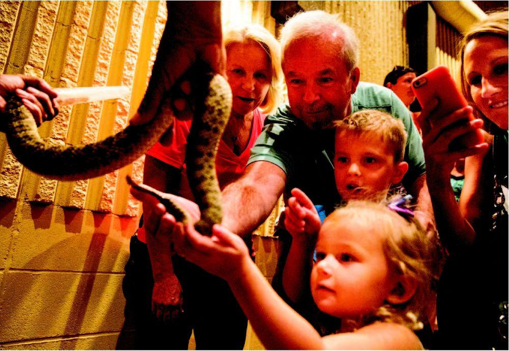 Take comfort: Few deadly snakes here   Articles   omaha com