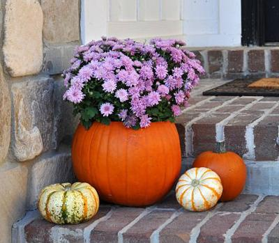 Pumpkins put to work as planters