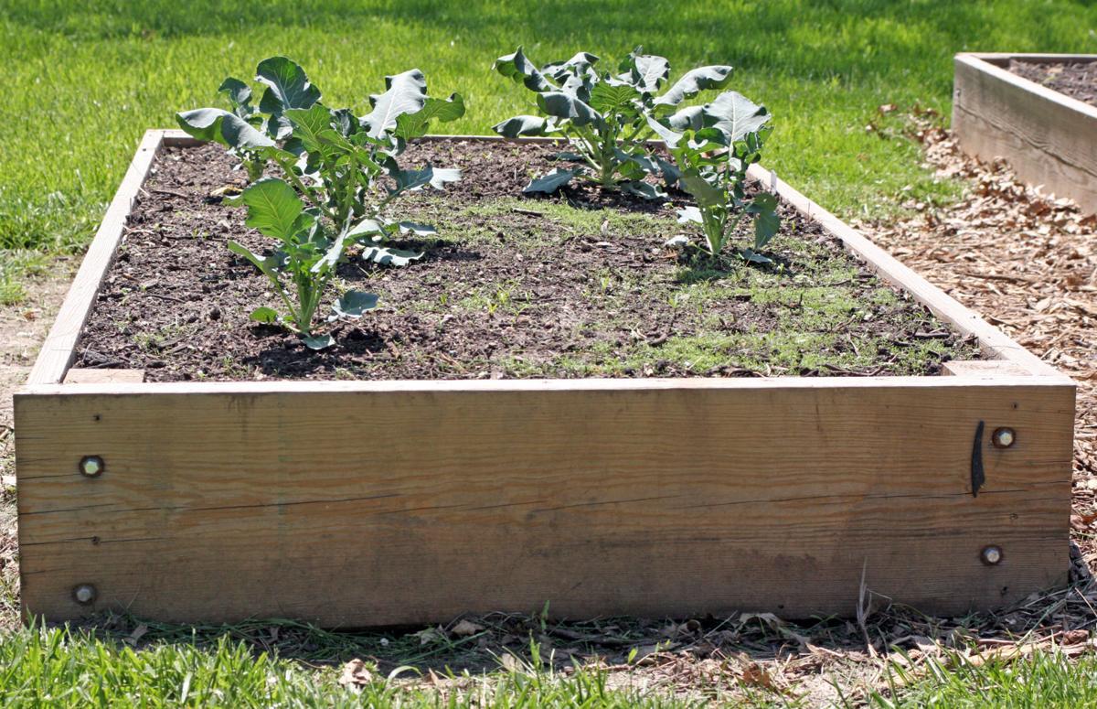 Community garden file