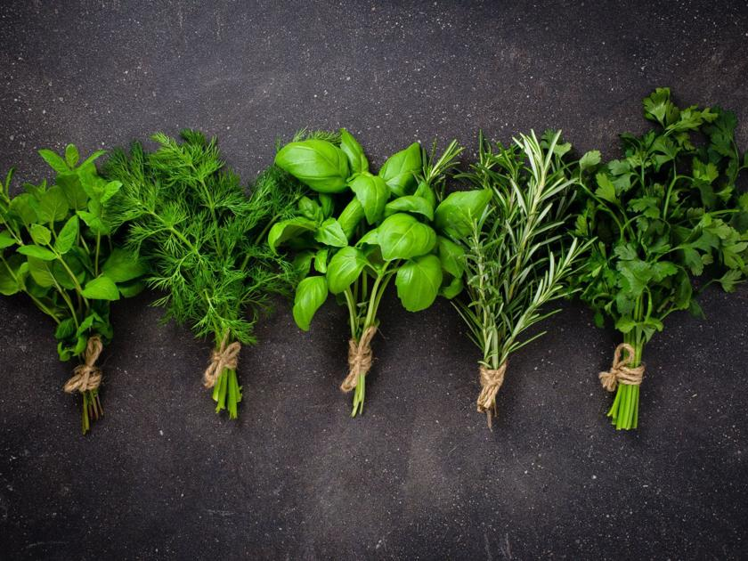 Culinary herbs, your Sous chef | Savor | omaha.com