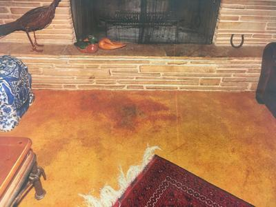 Photo of carpet where Dorothy Pistillo lay before being found suffering from severe neglect