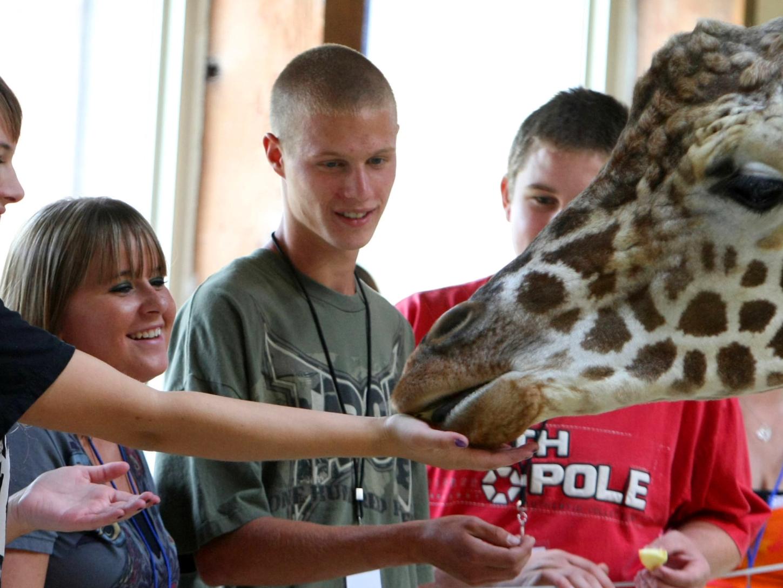 Henry Doorly Zoo euthanizes its 17-year