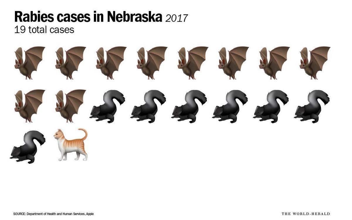 2017 cases