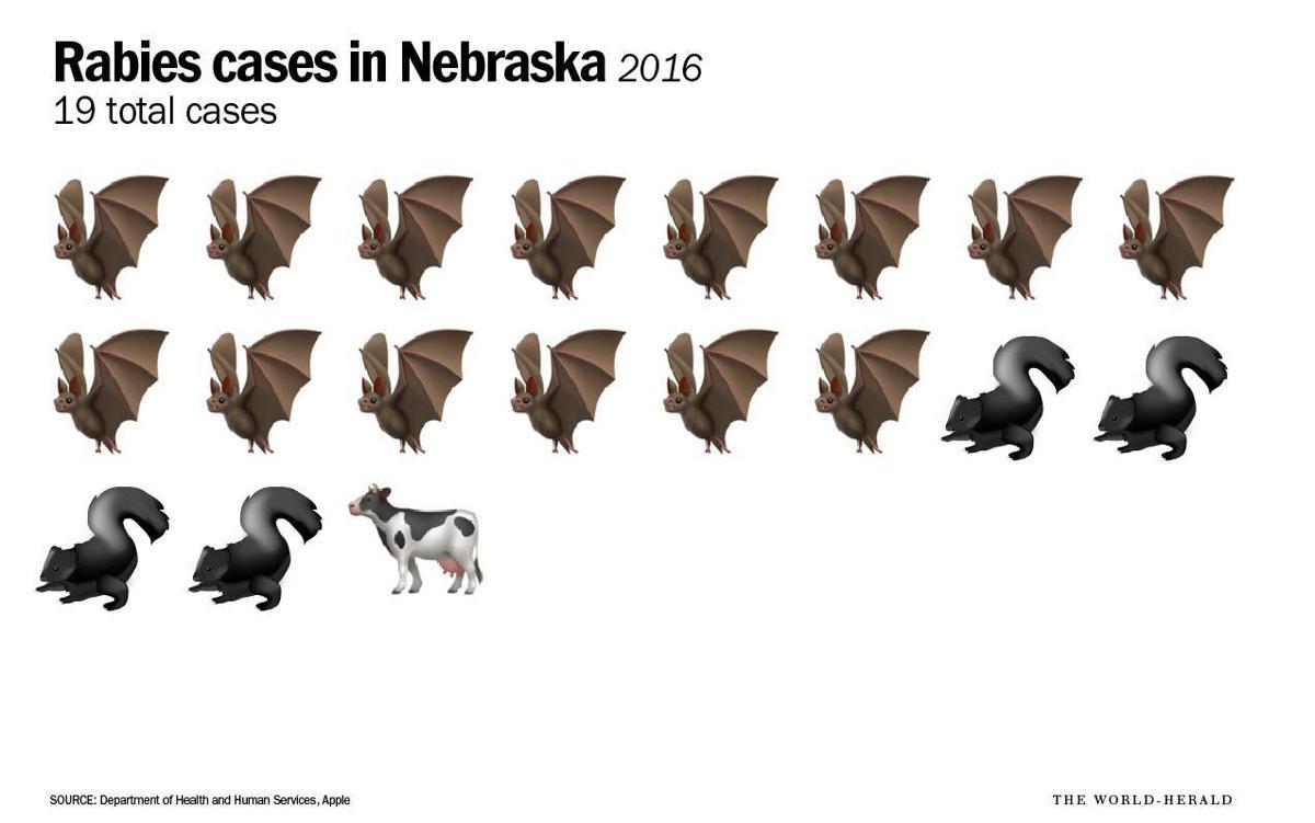 2016 cases