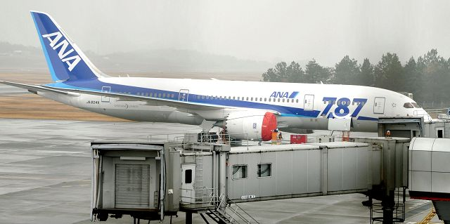 Resolution to 787's battery fires may weigh on Boeing