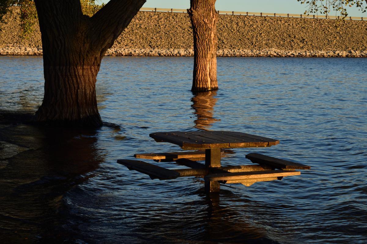 Harlan picnic bench_00001