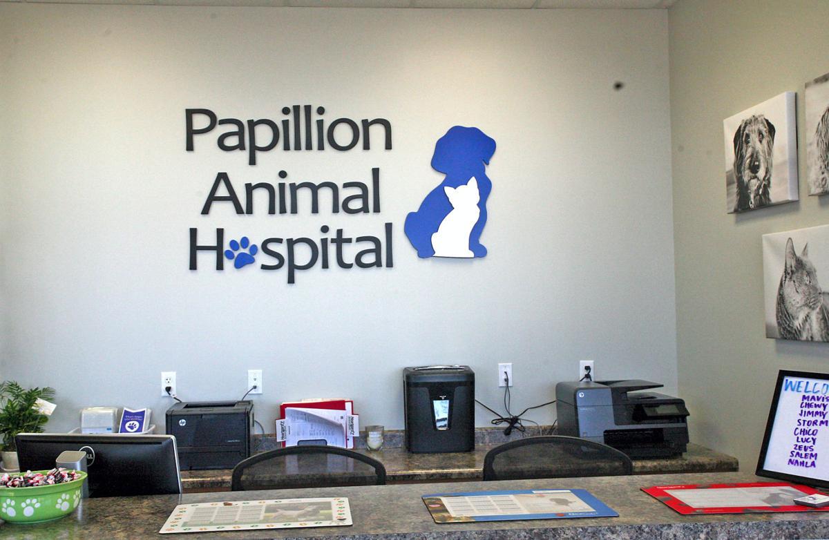 Papillion Animal Hospital Now Open Papillion Times Omaha Com