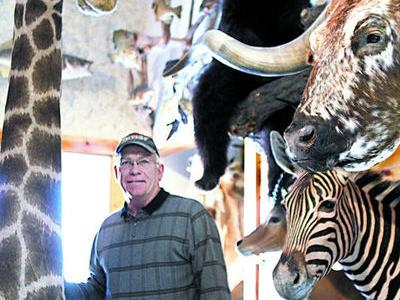Step inside Nebraskan's taxidermy business to see its global reach