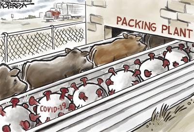 Jeff Koterba's latest cartoon: Heading into the packing plant