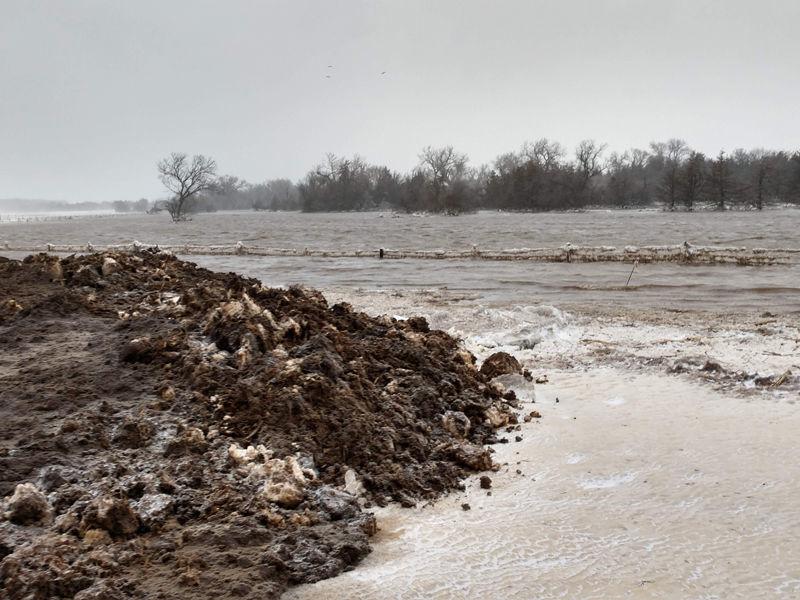 kaminski flood.jpg