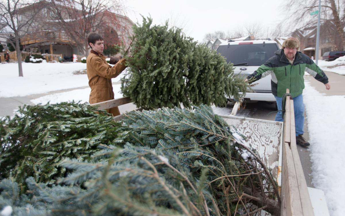 Did you have a live Christmas tree? Boy Scouts will pick it up or you can take it to a drop-off ...