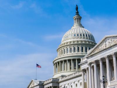 U.S. Capitol Building, Washington D.C. (copy)