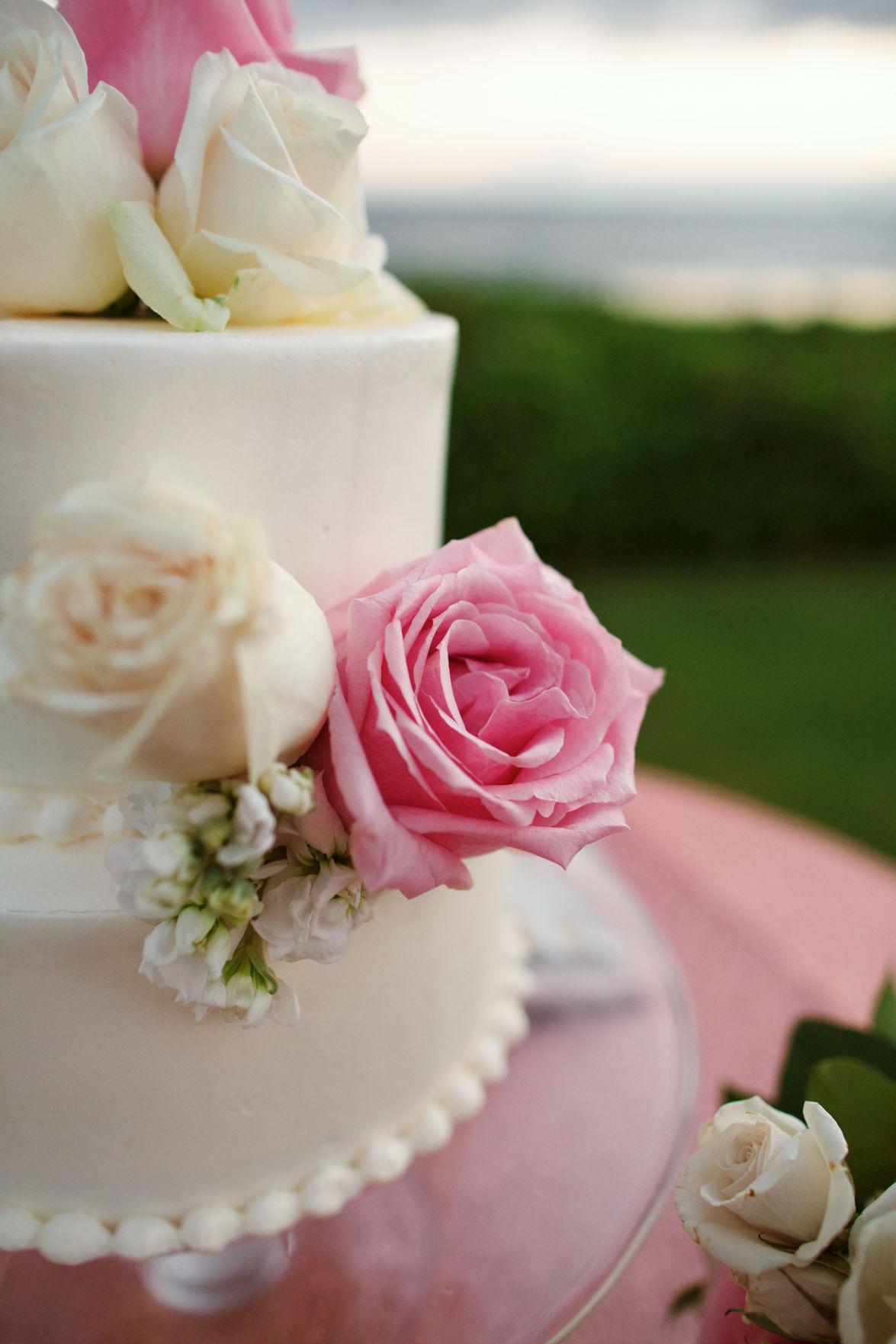 Blush Hawaiian Destination Wedding | Wedding Essentials - Omaha ...