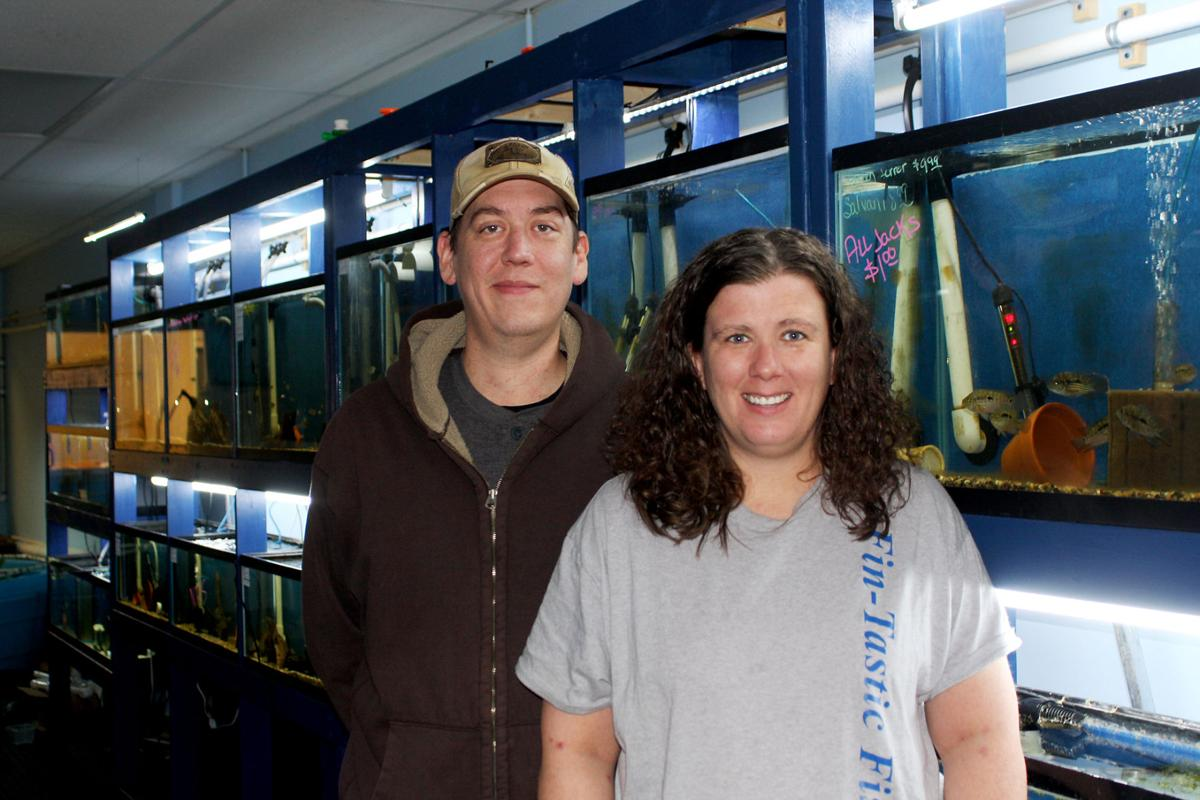 Fintastic fish up and swimmingat fort crook road location for The fish omaha