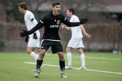 Team Soccer Herzegovina Opportunity Relishes com And Bosnia Ibisevic Uno's With Omaha Elvir National
