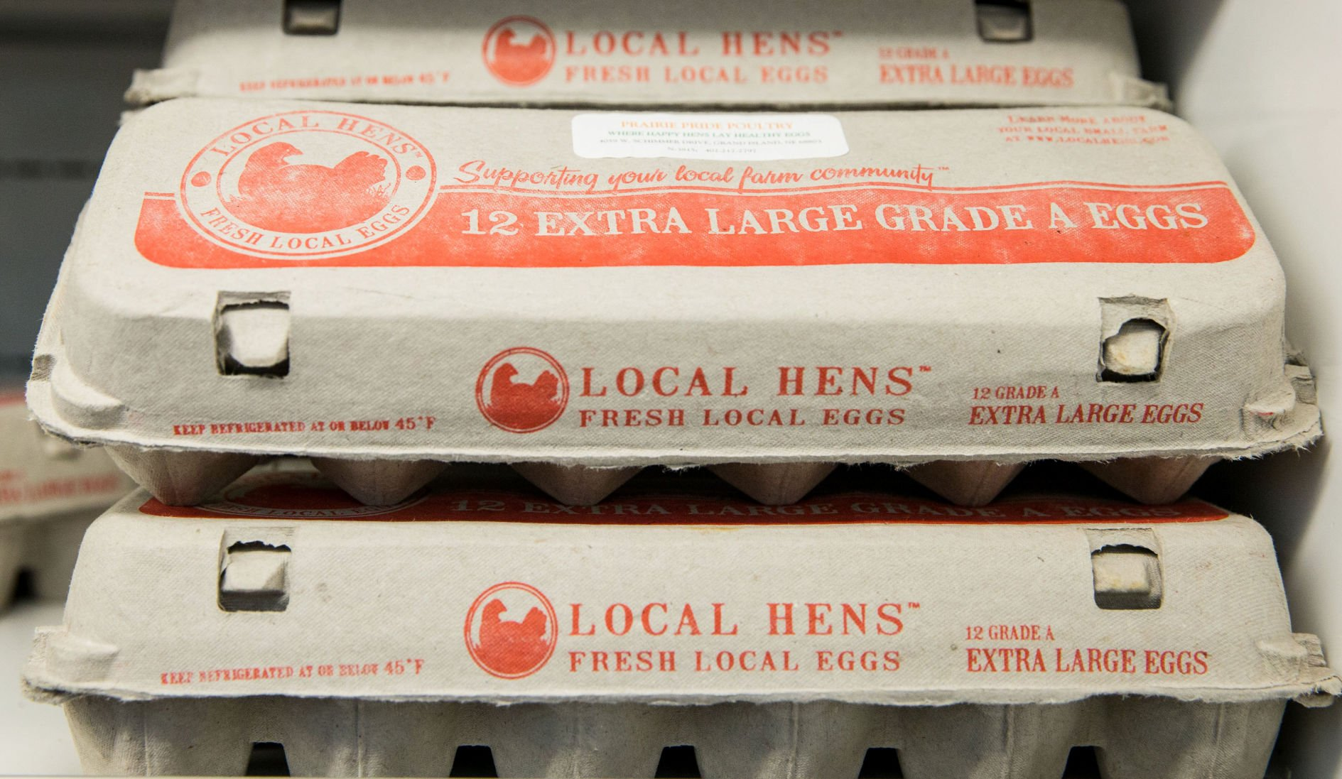 50 pack of 12 Count Grade A Extra Large Egg Cartons Country Fresh Locally Grown.