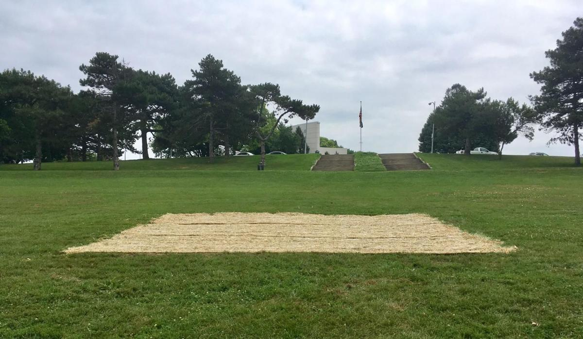Omaha crews replant Memorial Park grass where swastika was found