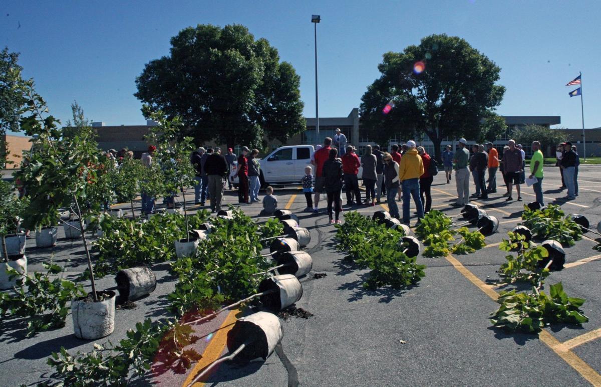Annual tree giveaway set for Sept  7 | Gretna Breeze | omaha com