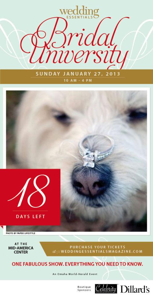 18 days left until Wedding Essentials Bridal University 2013!