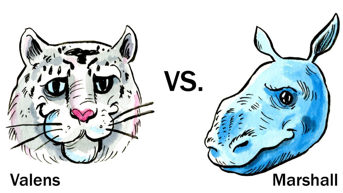 Zoo animal bracket: the final two