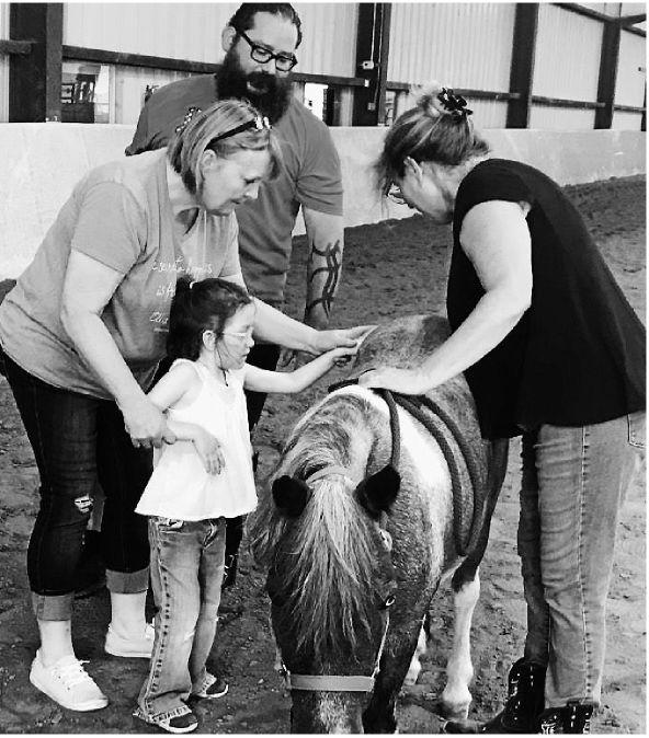 Equine therapy program for vets, families combines horses, healing