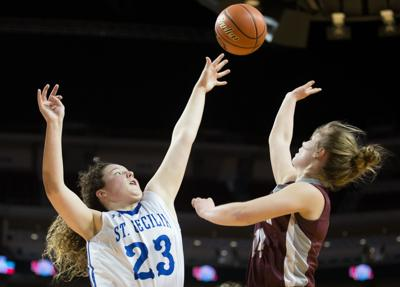 Class C-2: Hastings St. Cecilia wins program's first state championship since 2011