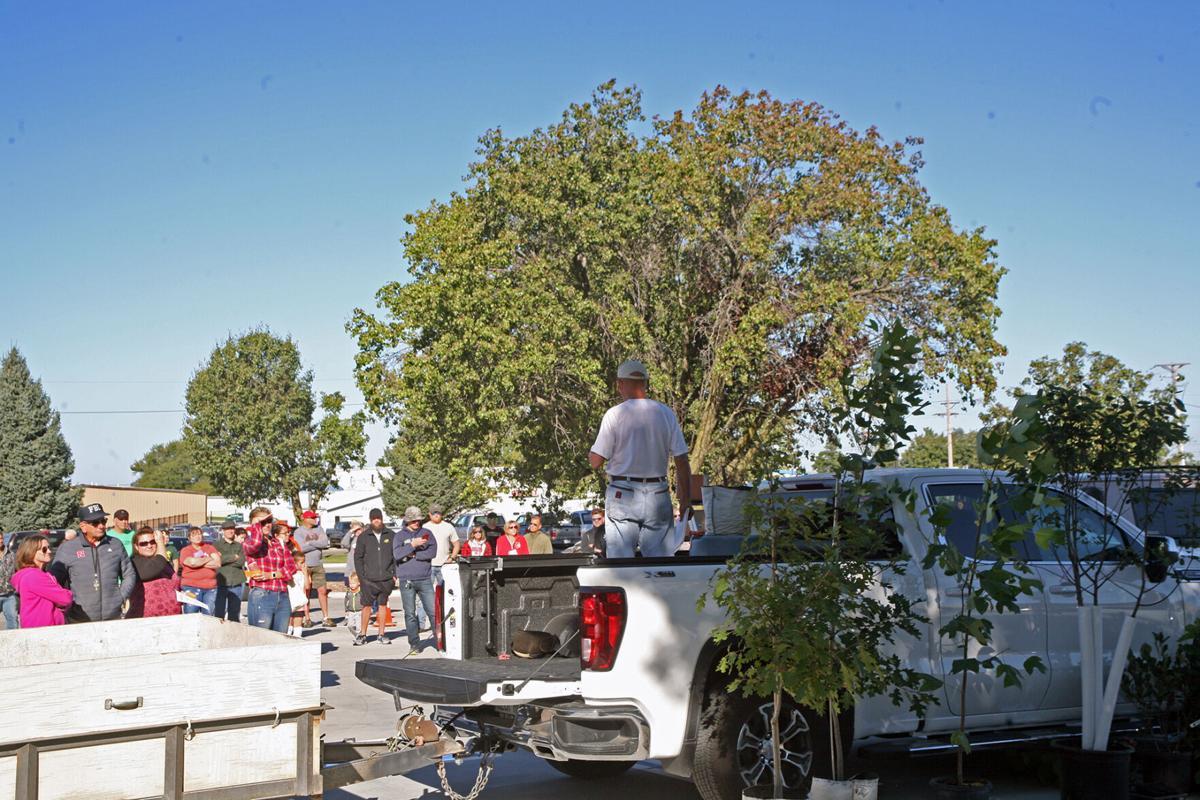 092921-gb-news-tree-giveaway-p2.jpg