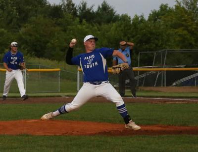 PLVS #17 pitch final.jpg