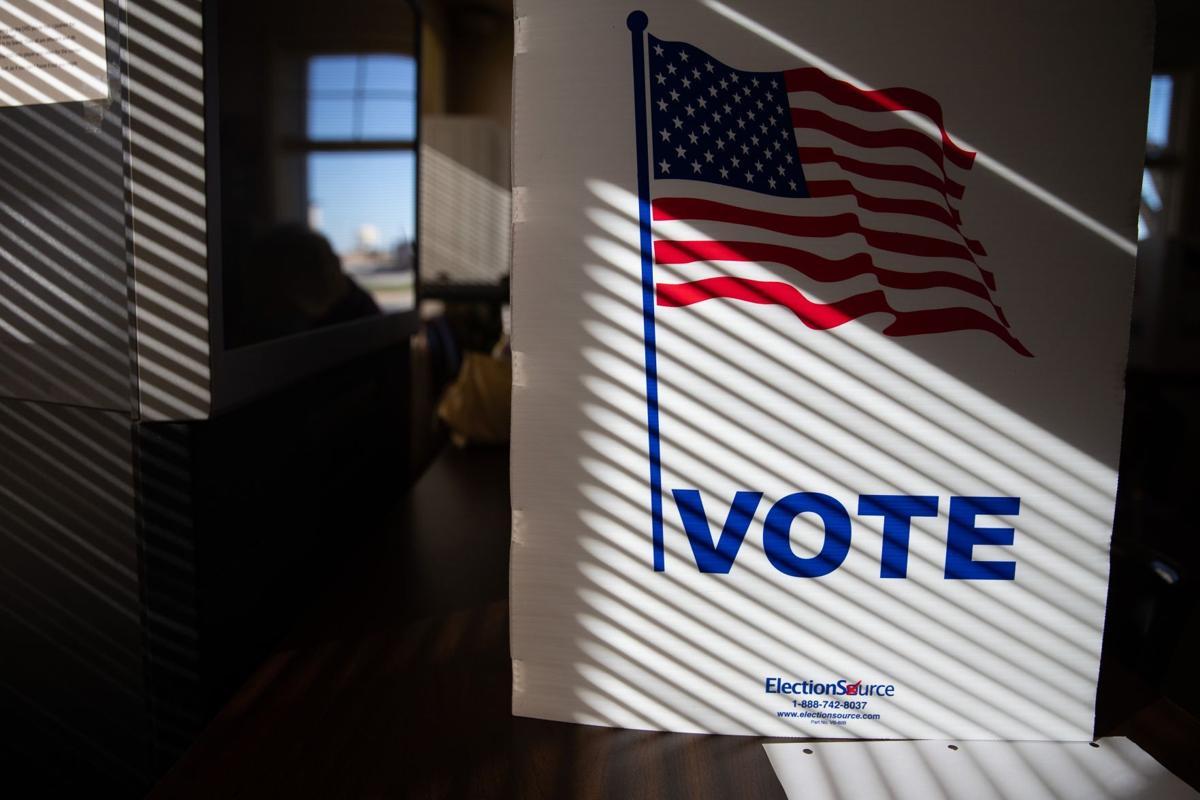 20201104_new_voting_ar02 (copy)