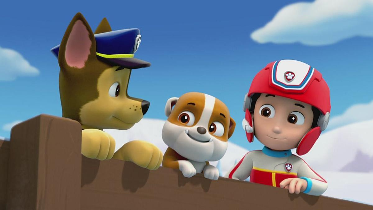 Meet Chase from the Paw Patrol