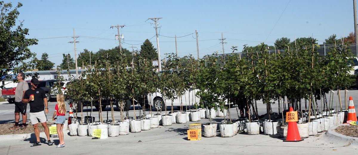 092921-gb-news-tree-giveaway-p3.jpg