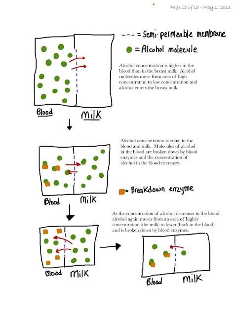 Breast milk alcohol